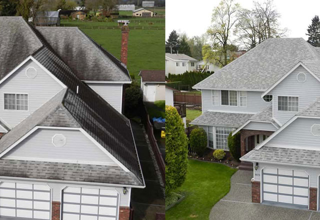 affordable roof cleaning Abbotsford BC