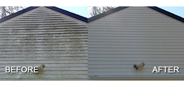 best siding cleaning service Abbotsford